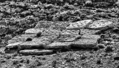 Desert Sculpture Park, Mitzpe Ramon, Dov Heller, cisterns